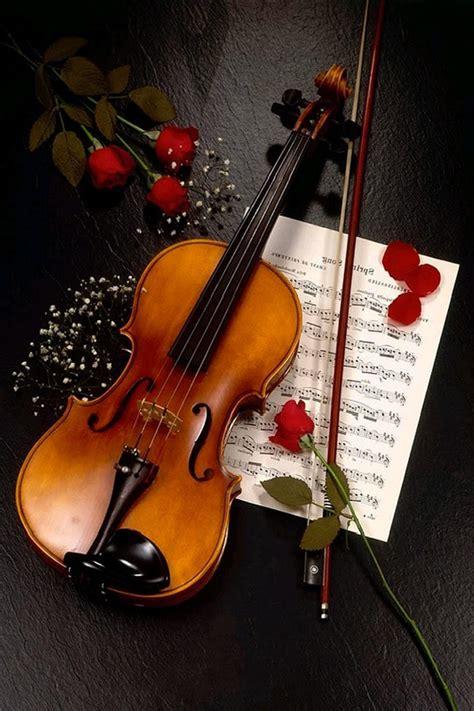 wallpaper iphone 5 violin violin rose wallpaper violin rose iphone 4 wallpaper