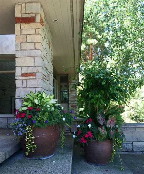 Botanical Gardens Minneapolis Mn by Summer Botanical Blitz Gardening Professionals