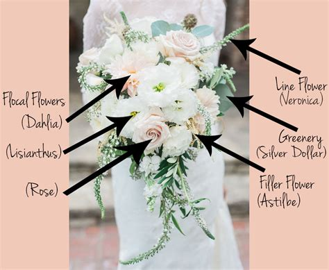 Wedding Bouquet Flower Types by Get To Your Flower Types Fiftyflowers The