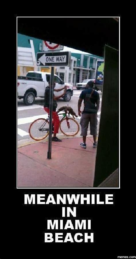 Miami Memes - meanwhile in miami beach memes com