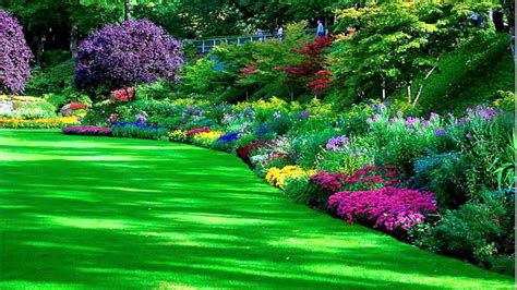 garden images hd free download the garden inspirations