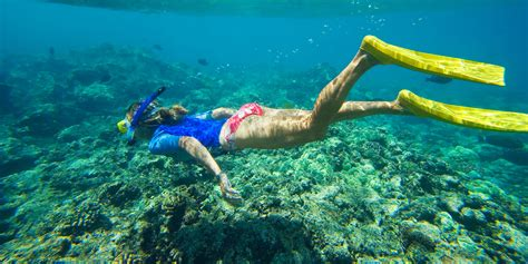 Best Snorkeling Spots Hawaii   Motorcycle Review and Galleries