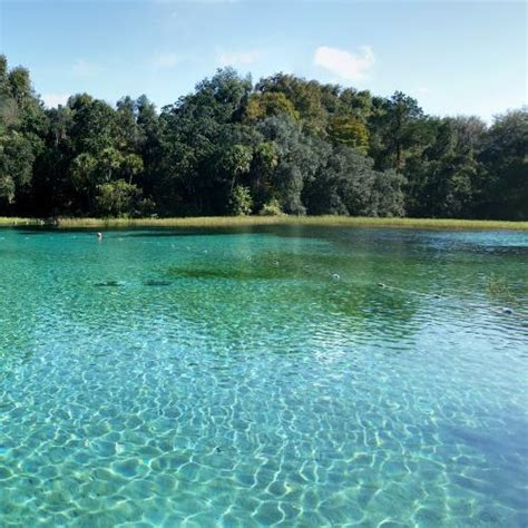 rainbow springs state park  dunnellon fl google maps