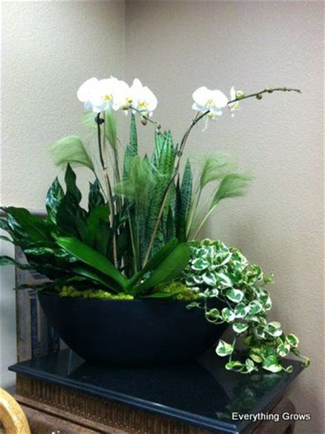 indoor plant arrangements large indoor container garden gorgeous white