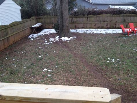 Do Dogs Need Grass Backyard paths need landscaping solution