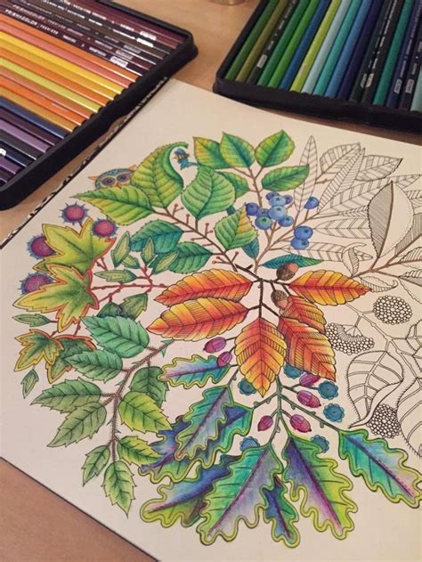secret garden coloring book colored pencil secret garden an inky treasure hunt and coloring book