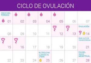 Calendario Como Calcular Calcular D 237 As F 233 Rtiles Embarazo10