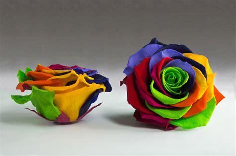 fiori stabilizzati come fare stabilizzati joyflor