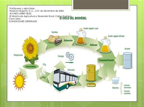 art 477 y 478 del estatuto tributario nacional et las leyes de biodiesel