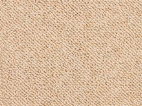 hypoallergenic shoo hypoallergenic carpet shoo beste awesome inspiration