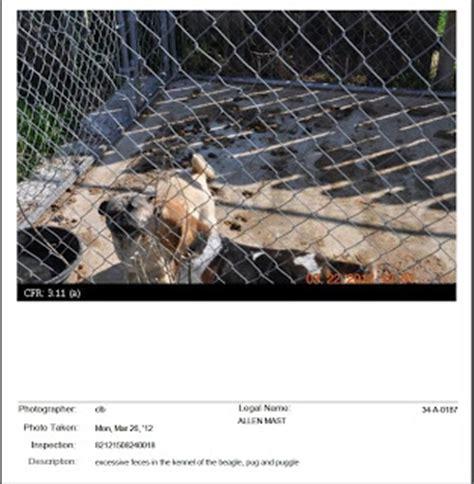 usda puppy mill list puppy mill awareness southeast michigan allen mast usda