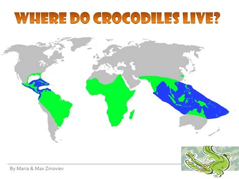 where does live crocodiles for 2nd graders