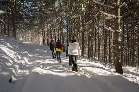 Winter Rental On The Mountain by 4 Tips For Winter Hiking In The Smoky Mountains Amazing