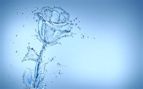 themes water hd cool water flower wallpaper 37544 1920x1200 px