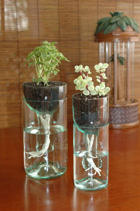Wine Bottle Planter Self Watering 7 projects we wish we had thought of gearfuse