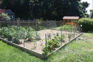 how to keep in yard without fence how to chicken proof your garden modern farmer