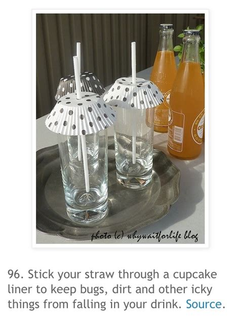 how to keep water bugs out of your house how to keep bugs out of your drinks when outdoors trusper