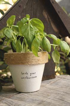 herb puns images indoor garden flower pots