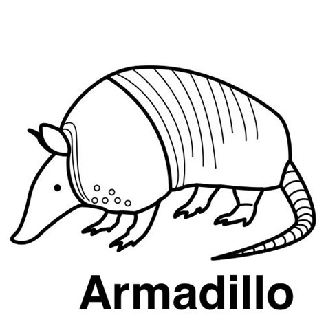 armadillo animado coloring pages
