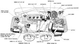 car engine diagram for get free image about wiring diagram