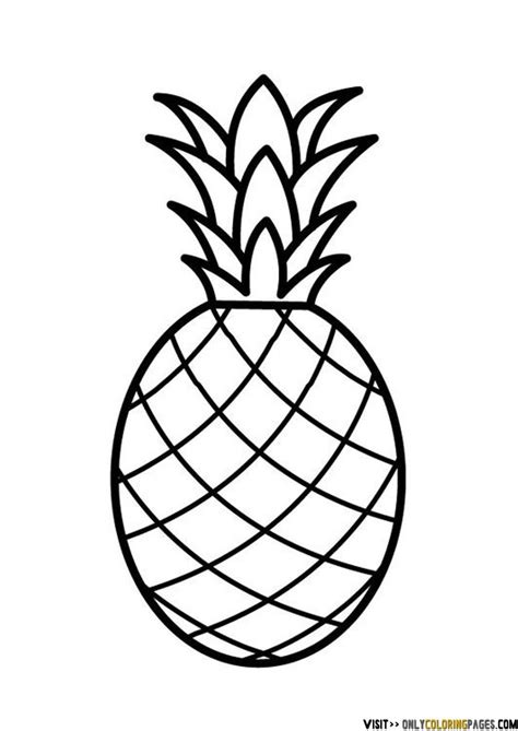 pineapple coloring page pineapple coloring page only coloring pages youth