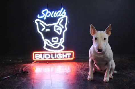 what of is spuds mackenzie original spuds mackenzie bud light neon bar sign in lower manhattan manhattan krrb
