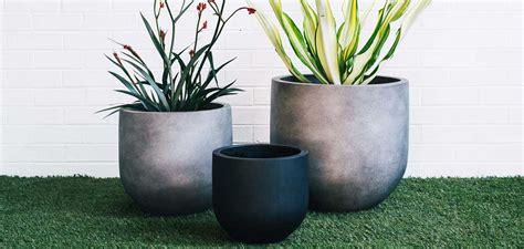 buy garden pots buy garden pots sydney planter pots buying