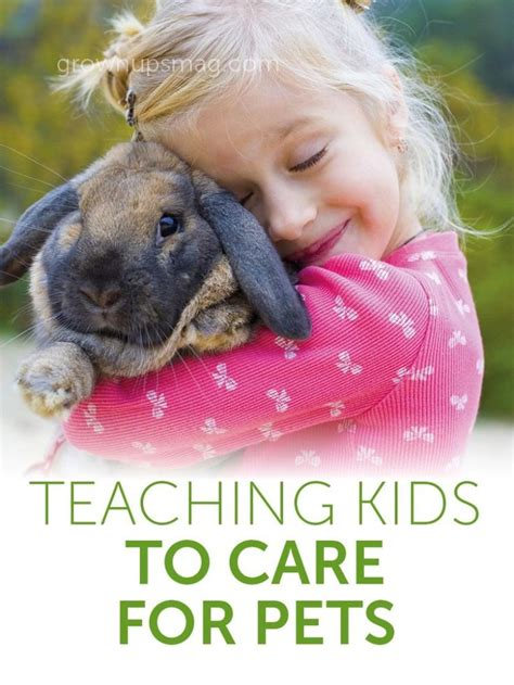 8 Tips On Caring For Pet Rabbits by The 25 Best Pet Care Ideas On Care