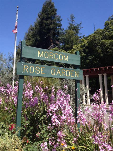 rose garden oakland
