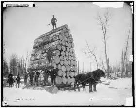 couper des tr 232 s gros arbres