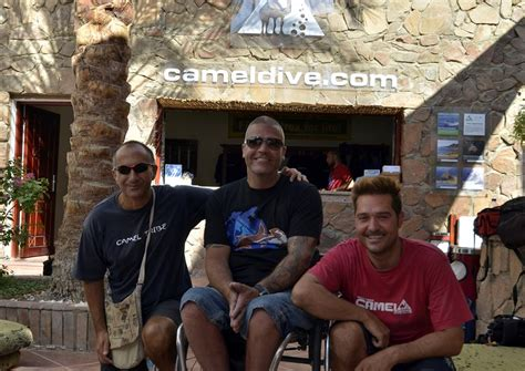 camel dive club centre de plong 233 e camel dive club 201 gypte dailydive