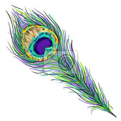 dibujo 233 tnico decorativo del pavo real blanco y negro vector ilustraci 243 n de plumas de pavo real aislados en