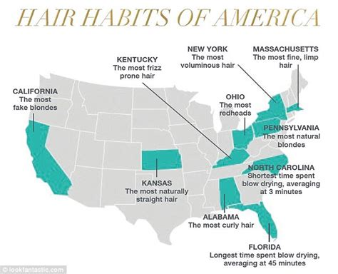hair color by state how much money women in america spend on hair daily mail