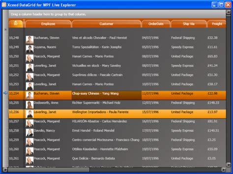 wpf theme editor tutorial xceed datagrid for wpf standard screenshots