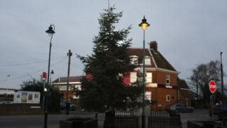 the kent christmas tree that can t be taken down cbbc