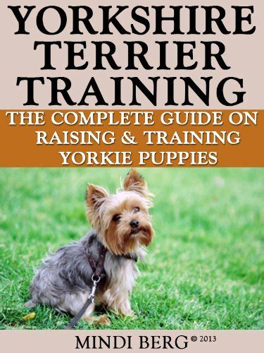 how to potty a yorkie puppy terrier puppies for sale in maryland