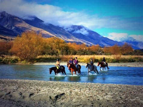Beautiful Coffee by Dart Stables Glenorchy New Zealand Water Crossings