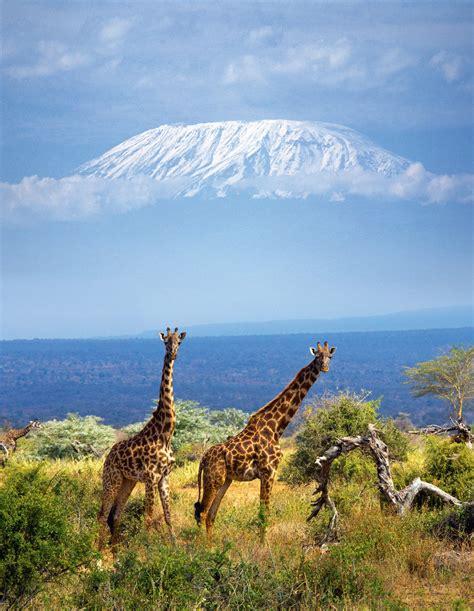 imagenes naturales mas bellas del mundo los parques naturales m 225 s bellos del mundo