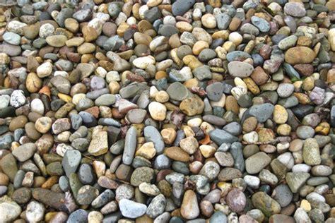 Garden Decorative Pebble by Decorative Pebble Garden Pebble And Driveway Pebble No