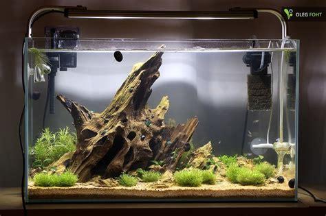 biconeo aquascaping neues  becken aquarien