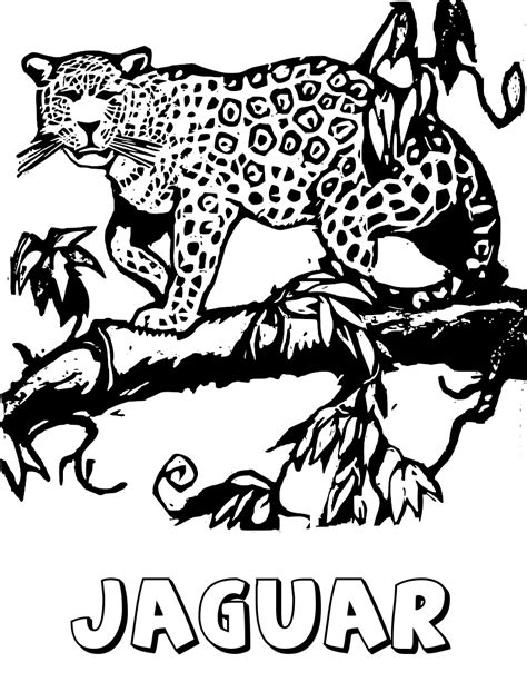 coloring pages jaguar animal jaguar on tree limb coloring page animals wild cats