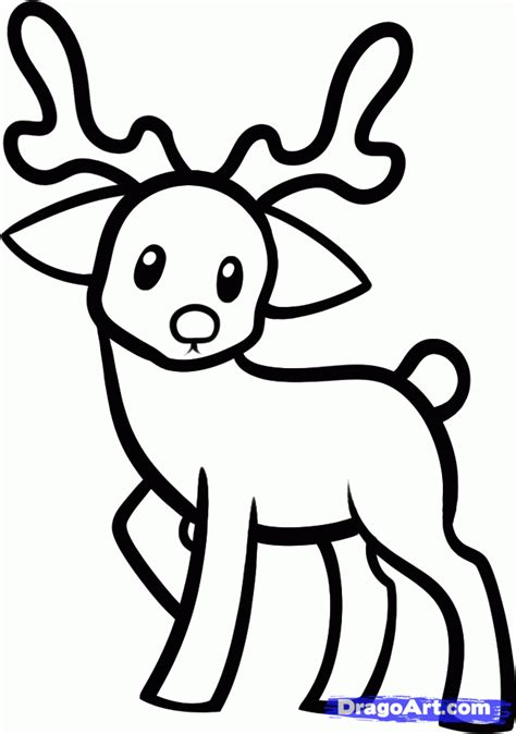 How To Draw Pets how to draw a reindeer for step by step animals for for free drawing