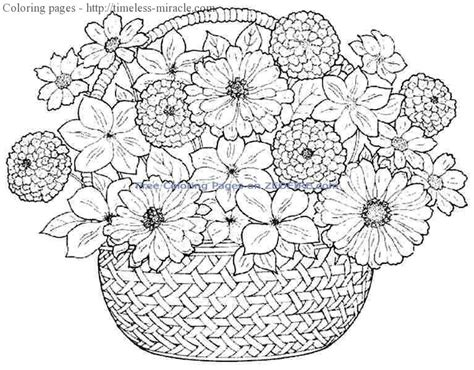 coloring pages for girls flowers