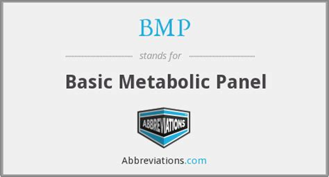 Basic Metabolic Panel Also Search For Bmp Basic Metabolic Panel