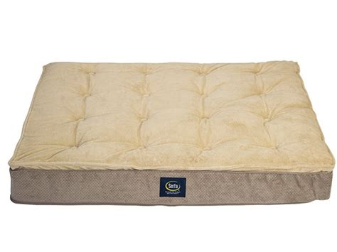 memory foam pet bed serta memory foam pillowtop pet beds