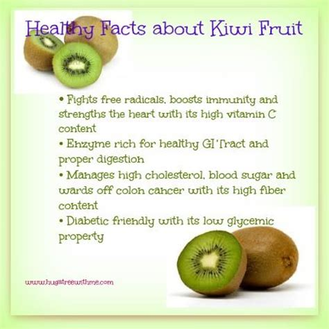 fruit facts healthy facts about kiwi fruit kiwi