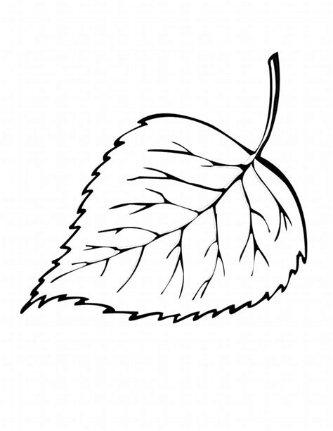 printable big leaves coloring pages of autumn leaves free printable leaf