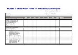 weekly operations report template helloalive