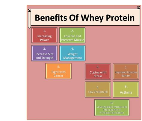 protein uses whey protein intake schedule khelmart org it s all