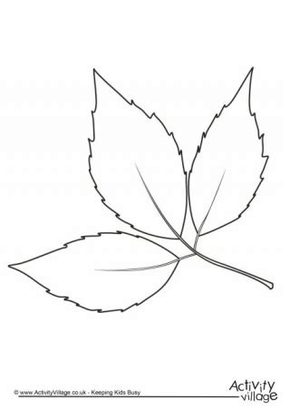 simple leaf coloring page simple leaf coloring pages color bros